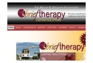 Brieftherapyconference Coupon Codes July 2020