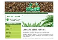 Cannabisseedsforsale Coupon Codes January 2019
