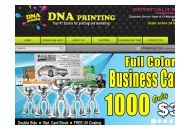 Printwithdna Coupon Codes March 2019
