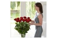 Torontoflorist Coupon Codes April 2020